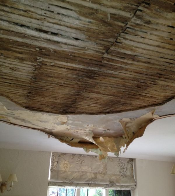 Resolve Building Claims Leaks and water damage building insurance photo